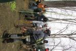 Local arborists take advantage of a training session provided by Vermeer North Atlantic.