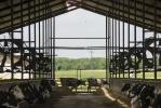 Still Meadow's cows live in open-air barns with water-cooled fans — necessary comforts that contribute to a better-quality product.