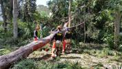 CBP officers from FLETC Field Operations Academy responded to humanitarian and recovery missions in the Brunswick, Ga., area following Hurricane Irma.  (Staff Sgt. Carmen Fleischmann photo)