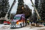 Loading the tree onto the Kenworth T680 1. (Photo Credit: James Edward Mills / Choose Outdoors)