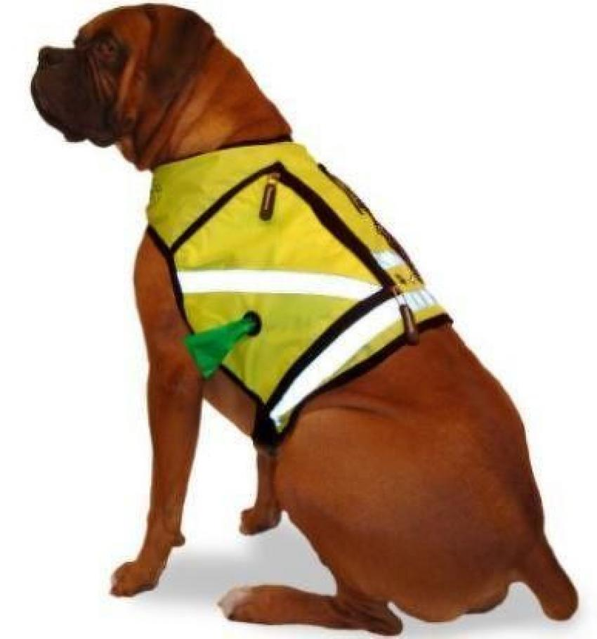 Reflective Dog Vest — This safety vest might make it look like your dog is ready to get to work on the construction site, but it's perfect for a late-night walk around the block. Available in four sizes and six colors, this vest also features a variety of zippered pockets and a harness connector. Starting at $29.99