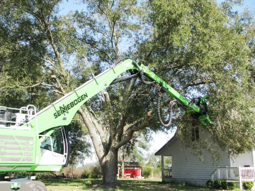 As easy as one, two, three. A Sennebogen 718E takes down a tree during a recent Great Southern Equipment demonstration in Live Oak, Fla.
