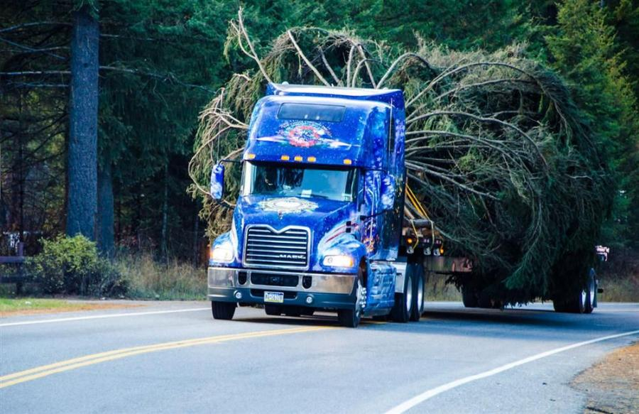 The 2013 U.S. Capitol Christmas tree, harvested from the Colville National Forest in Washington State, began its multi-state trek to Washington, D.C., with the help of a 2014 Mack Pinnacle model truck.