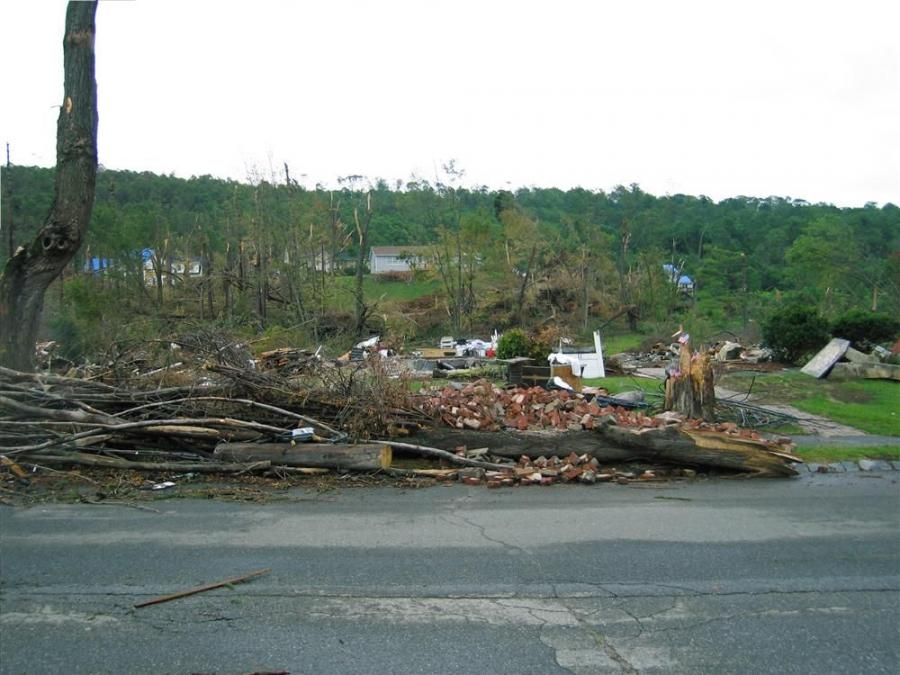 His house completely destroyed, a Monson resident adorns the trunk of his splintered tree with American flags to show his faith in his town and country in the face of disaster.