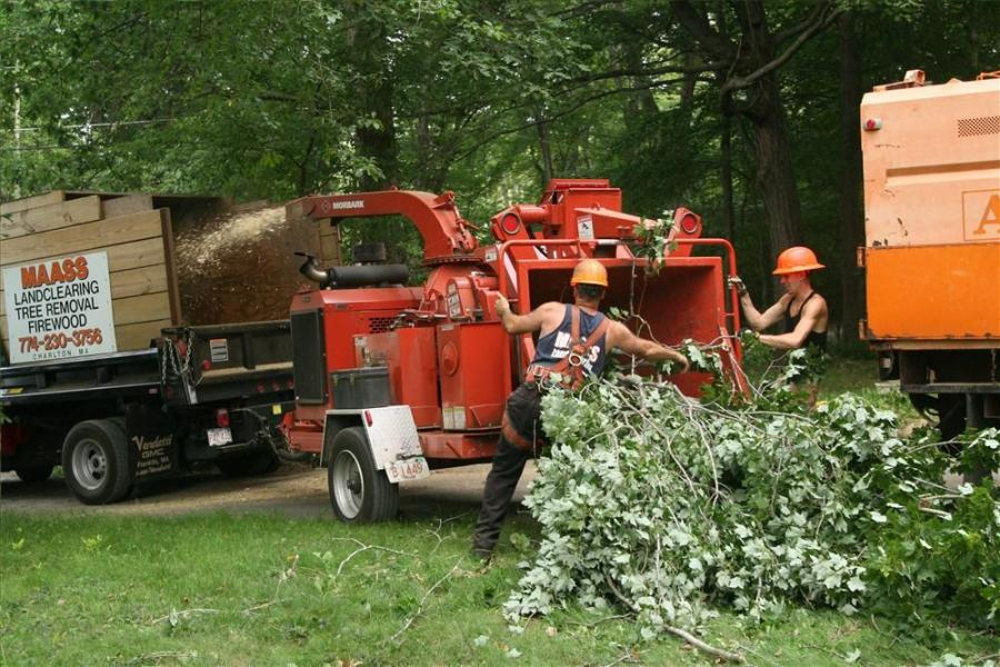 Workers feed a Morbark Tornado.