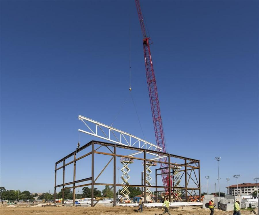 LSU photo 