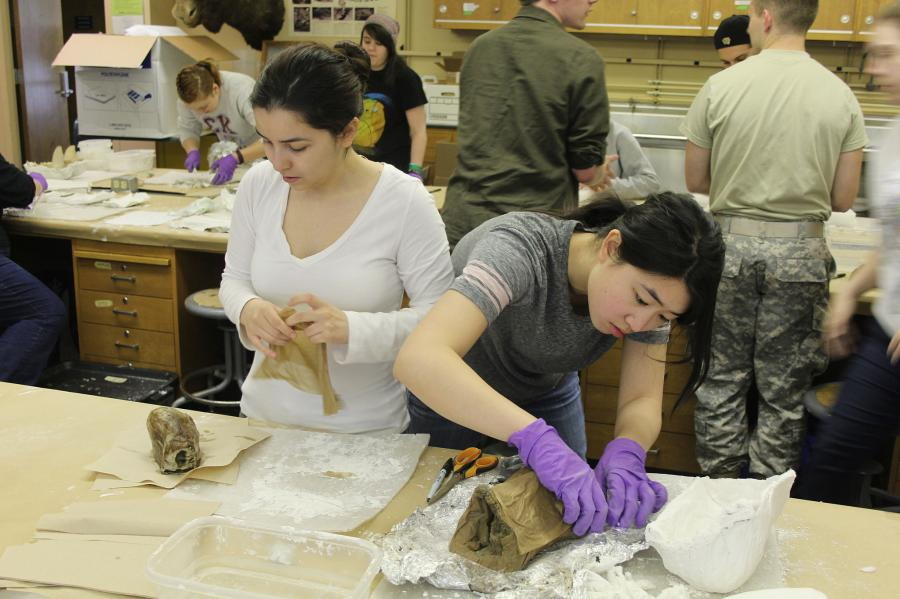 Theresa Hogue photo