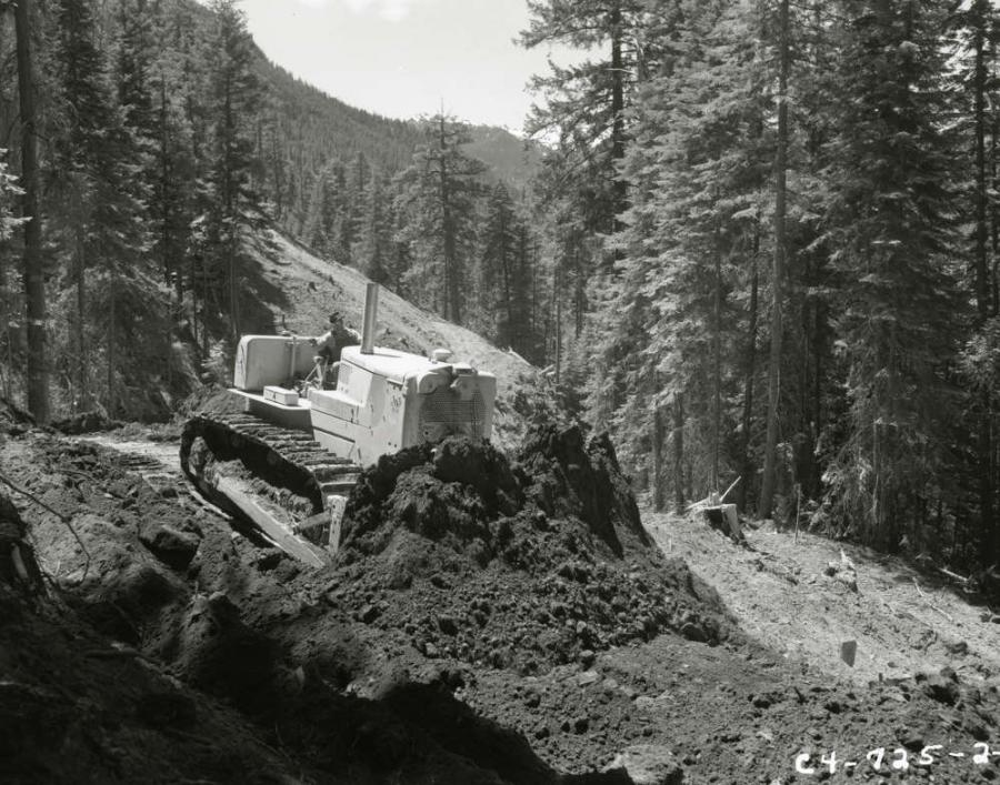 Caterpillar photo.
