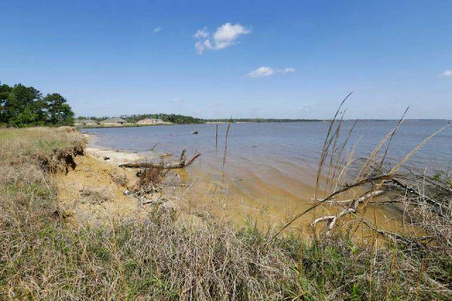Southwest shore of Lake Houston. Photo- Houston Chronicle via AP Melissa Phillip