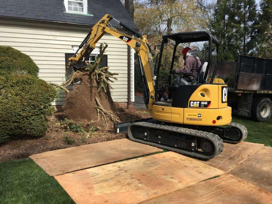 Fox's latest project is a landscape renovation for a single homeowner; a typical piece of work on the residential side of the business.