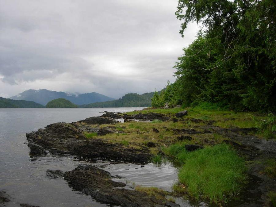 KTOO.org reported Alaska conservation groups like the Southeast Alaska Conservation Council, which opposes expanded logging in the Tongass National Forest, celebrated the ruling Sept. 21.