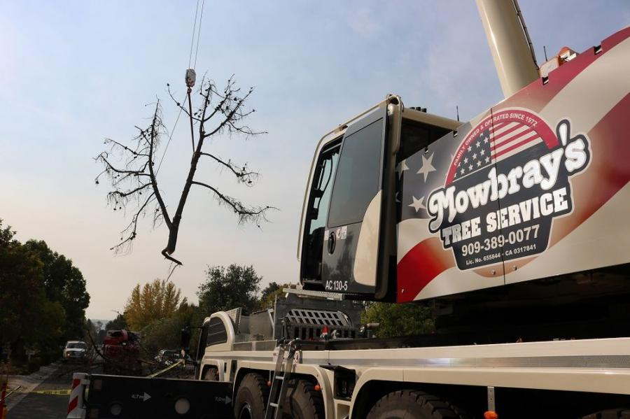 When a tree has become too hazardous to climb and/or work by conventional means, a crane is used to mitigate hazards to the climbing arborist.