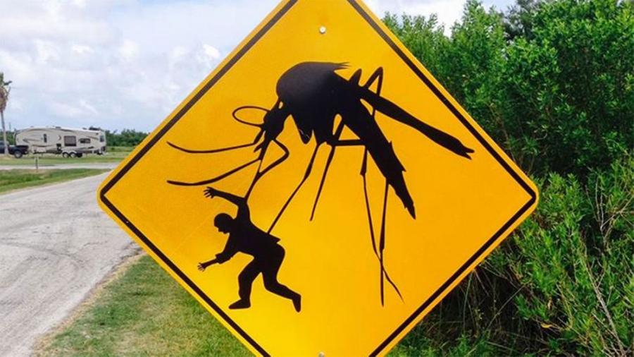 To help you and your crew avoid mosquito- and tick-borne diseases, OSHA has provided some guidelines.