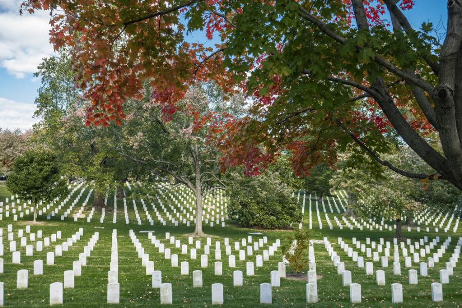 Work on the Southern Expansion of Arlington National Cemetery will begin in 2020.