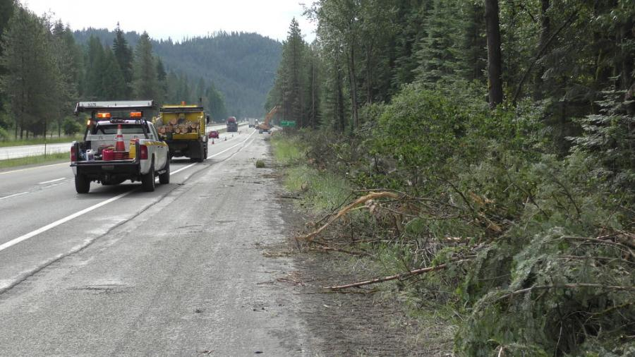 The contractor will remove dead and dying trees from 200 acres of state property while also harvesting other trees in the area to cover operating costs.