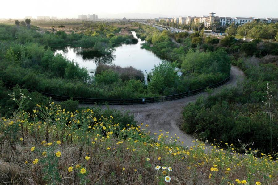 The project aims to restore the ecological function of 566 acres of the reserve, which lies between the Santa Monica Bay community of Playa del Rey and sprawling Marina del Rey.