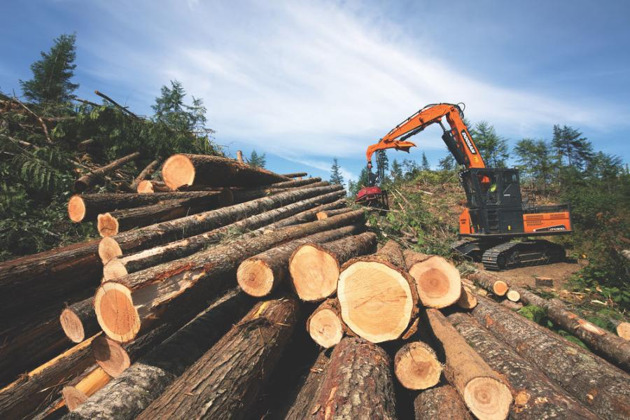 To fell the trees, move timber and maintain logging roads, McLaughlin Logging's team operates a variety of heavy equipment. Among them are two Doosan DX300LL log loaders with processing heads.