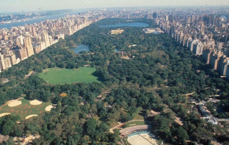 Building New York City's Central Park in the 19th century from the ground up was a mammoth manual grading and beautifying construction project.